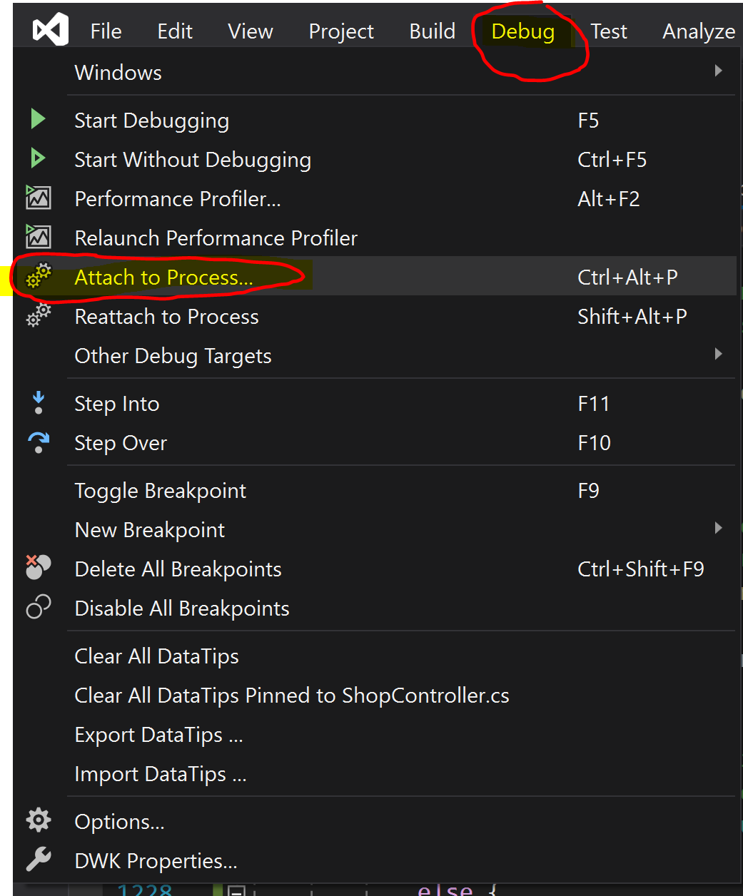How to Attache to Process Application Running in IIS from Visual Studio 2019